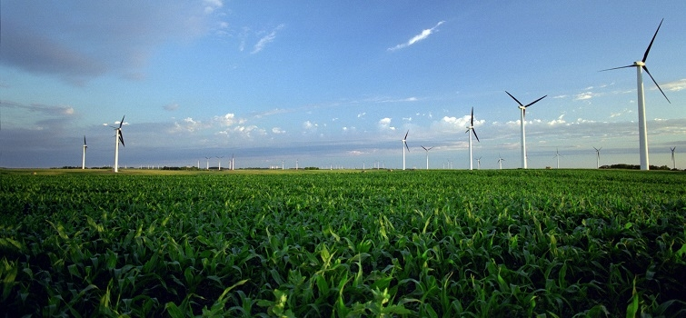 New Wind Energy Reports Show Rapid Growth of Industry