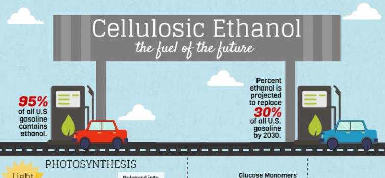 BioenergizeME Infographic Challenge: Cellulosic Ethanol