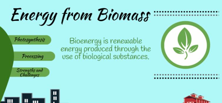 BioenergizeME Infographic Challenge: Energy from Biomass