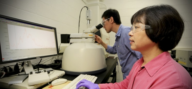 Researchers from the Environmental Sciences Division at Oak Ridge National Laboratory conduct research on Mercury.