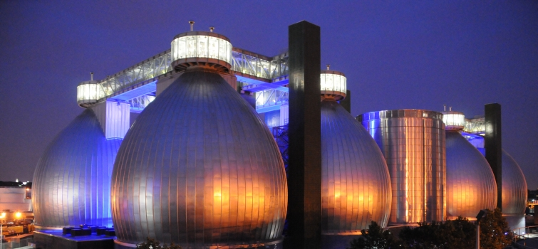 One Year Down the Road of Biogas Industry Development