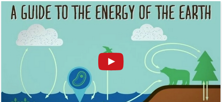 Use Energy Literacy Materials to Promote Energy Education