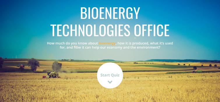 Bioenergy Quiz