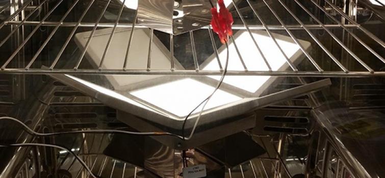 CALiPER Looks at OLED Luminaires
