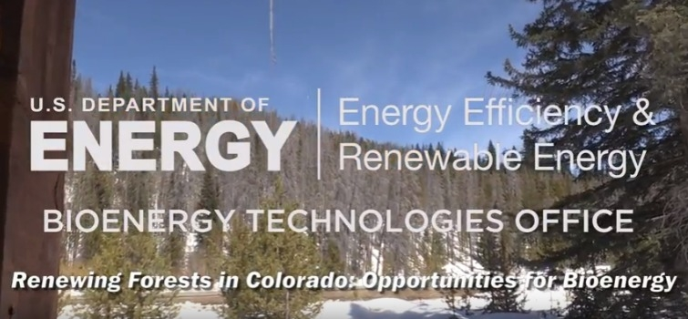 Renewing Forests in Colorado: Opportunities for Bioenergy