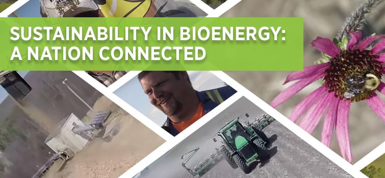 Watch the Sustainability in Bioenergy Video