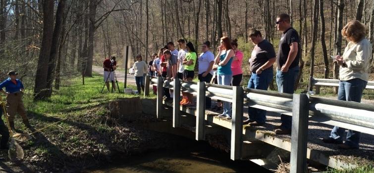 Waverly Students Prepare DOE Environmental Report Summary