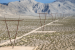 ONE NEVADA LINE