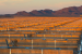 America's cleantech industry has a bright -- and growing -- future.