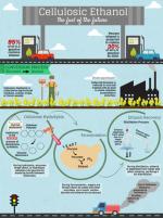 Bioenergy News