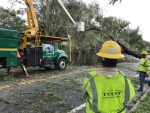 Tampa Electric Co. workers remove downed trees in the wake of Hurricane Irma.