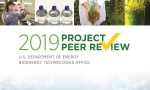 2019 project peer review