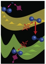 Scientists use three ultrafast pulses of extreme ultraviolet light and near infrared light to control the evolution of excited nitrogen molecules (blue) to reveal information about normally inaccessible states.