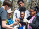 Students from South Aiken High School participate in the Science Technology Enrichment Program at the Savannah River Site, netting small aquatic creatures and testing pond water to learn more about freshwater ecosystems.