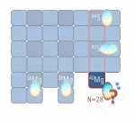 Magnesium-40 (40Mg) sits at the intersection of the magnesium isotopes and the chain of nuclei with 28 neutrons. A recent measurement of gamma-ray transitions in 40Mg shows something beyond what theory expected.