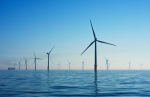 Many wind turbines in ocean and silhouetted against blue sky.