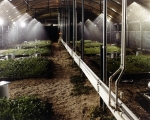 Soil study at DOE's Argonne National Lab