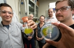 5 researchers, holding a petri dish and a vial with algal samples.