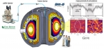 By shooting pellets of frozen hydrogen into fusion plasma in a tokamak, scientists at the DIII-D National Fusion Facility have been able to control instabilities in the magnetic field that holds plasma together.