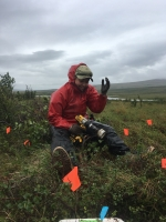 Ecosystem Ecologist Verity Salmon captures and analyzes field data from sites in in Alaska and Minnesota to inform earth system models that are being used to predict environmental change.