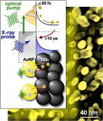 Optical laser pulses excite electrons in gold nanoparticles (AuNP) attached to a titanium dioxide (TiO2) substrate. Short X-ray pulses count the electrons injected from the nanoparticles into the substrate and monitor their return to the nanoparticles.