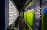 5 bioenergy daily uses