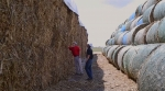 "Farmer Bruce Nelson and a representative from biofuels company POET-DSM stand between square and round bales of corn stover stock piled outside of POET-DSM's Project LIBERTY cellulosic ethanol biorefinery. Selling the corn plant residue after their corn harvest has generated a new revenue stream for many farmers, including Bruce. <a href=""https://www.youtube.com/watch?v=GU0Cu45cLT4"" target=""_blank"">Watch a video segment</a> about Bruce's story at the beginning of the film ""Bioenergy: America's Energy Future."""