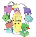 """Atomically precise catalysts can have a rigid shape which mimics the best catalysts found in nature (enzymes) and create a selective """"pocket"""" into which the chemical reactants fit."""