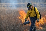 A firefighter uses a drip torch, a can of fuel with a flame-carrying torch head at the spout, to ignite the fire.