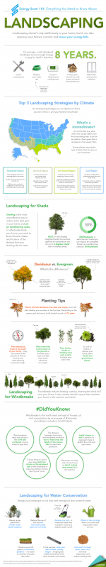 "Our new Energy Saver 101 infographic highlights everything you need to know to landscape for energy savings. Download a <a href=""/node/898361"">high resolution version</a> of the infographic or individual sections. 