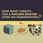 How many turkeys can a reactor cook on Thanksgiving