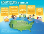 """This infographic summarizes the production potential, as well as the economic and environmental outcomes, of utilizing 1 billion tons of biomass per year. To see the kinds of biomass that could constitute the bioeconomy, check out the <a href=""""https://youtu.be/EjdixWf1tYw?t"""" target=""""_blank"""">""""Enabling the Billion-Ton Bioeconomy""""</a> video."""