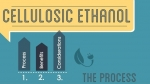 """A team of high school students designed this infographic about cellulosic ethanol. View the entire infographic from the <a href=""""http://energy.gov/eere/bioenergy/bioenergizeme-infographic-challenge-cellulosic-ethanol"""">Bioenergy Technologies Office website</a>."""