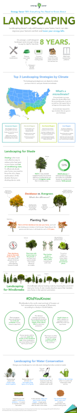 """Our Energy Saver 101 infographic highlights everything you need to know to landscape for energy savings. Download a <a href=""""/node/898361"""">high resolution version</a> of the infographic or individual sections.   Infographic by <a href=""""/node/379579"""">Sarah Gerrity</a>, Energy Department."""