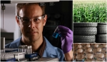 Collage of images, from left to right: scientist holding vial, bioenergy crop, tires, water bottles.