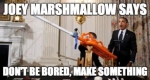 """Joey Hudy shot to fame in 2012 when, at 14-years-old, he attended the White House Science Fair where the President took a turn using the contraption he had made - the """"extreme marshmallow cannon"""". Joey then handed the President a card with his credo: """"Don't be bored, make something."""""""