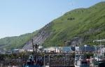 Utility-scale wind turbines in Kodiak, Alaska. Photo from Kodiak Electric Association, NREL 16795.