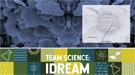 Taming the Chameleon Element Takes a Dream Team of Experts