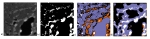 Deep Learning for Electron Microscopy