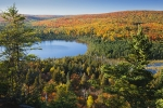 Microbial Community  Interactions Drive Methane Consumption in Lakes