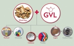 High Yield Biomass Conversion Strategy  Ready for Commercialization