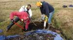 Stover_Jastrow_Alaskan soil carbon stocks