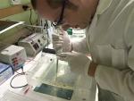 Methylmercury Sleuths Armed with New Spotlight