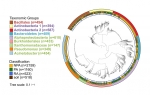 A Functional Genomics Database for Plant Microbiome Studies