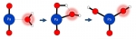 Rare Meets Common: Reacting Protactinium with Ubiquitous Water Explains an Elemental Oddity