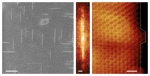 Growing Graphene Ribbons in One Direction