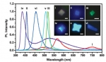 A New Family Member for 2D Nanomaterials