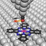 Unmasking the Molecule