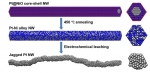 Jagged Platinum  Nanowires Double the Record for Reaction Critical to Fuel Cell Performance