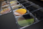 Speeding Materials Discovery Puts Solar Fuels on the Fast Track to Commercial Viability
